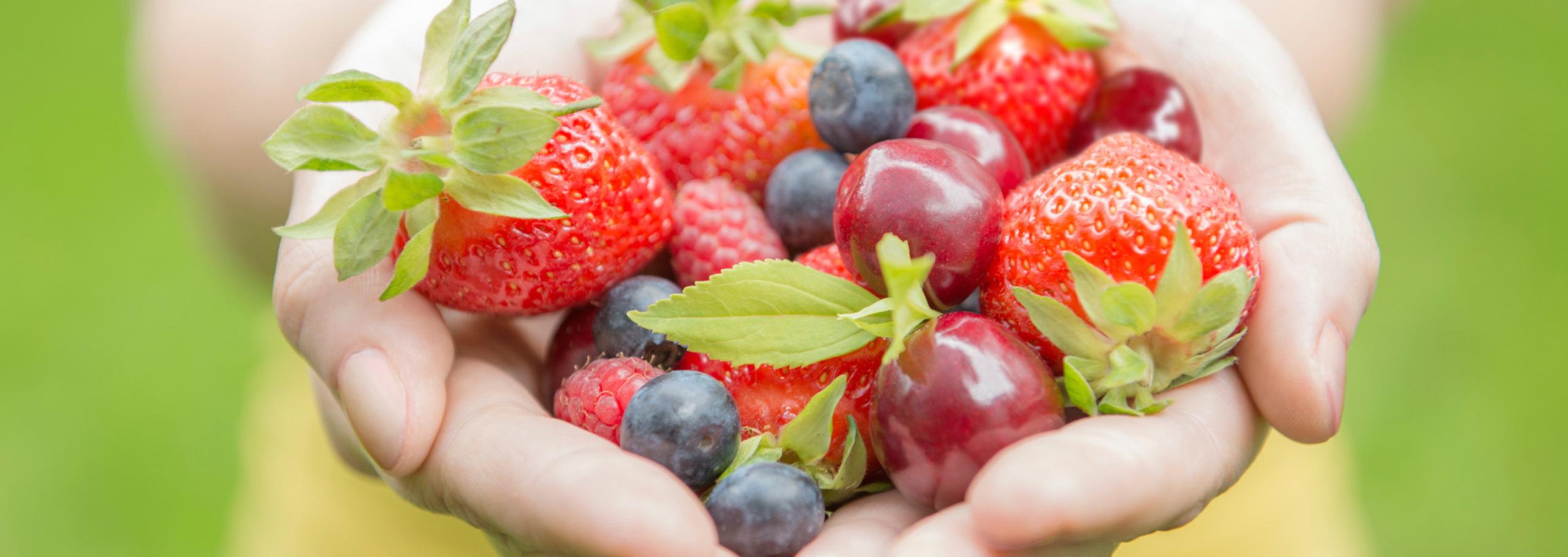 al servei de nutrició de BodyViu t'ajudem a aconseguir els teus objectius de forma equilibrada i amb resultats reals